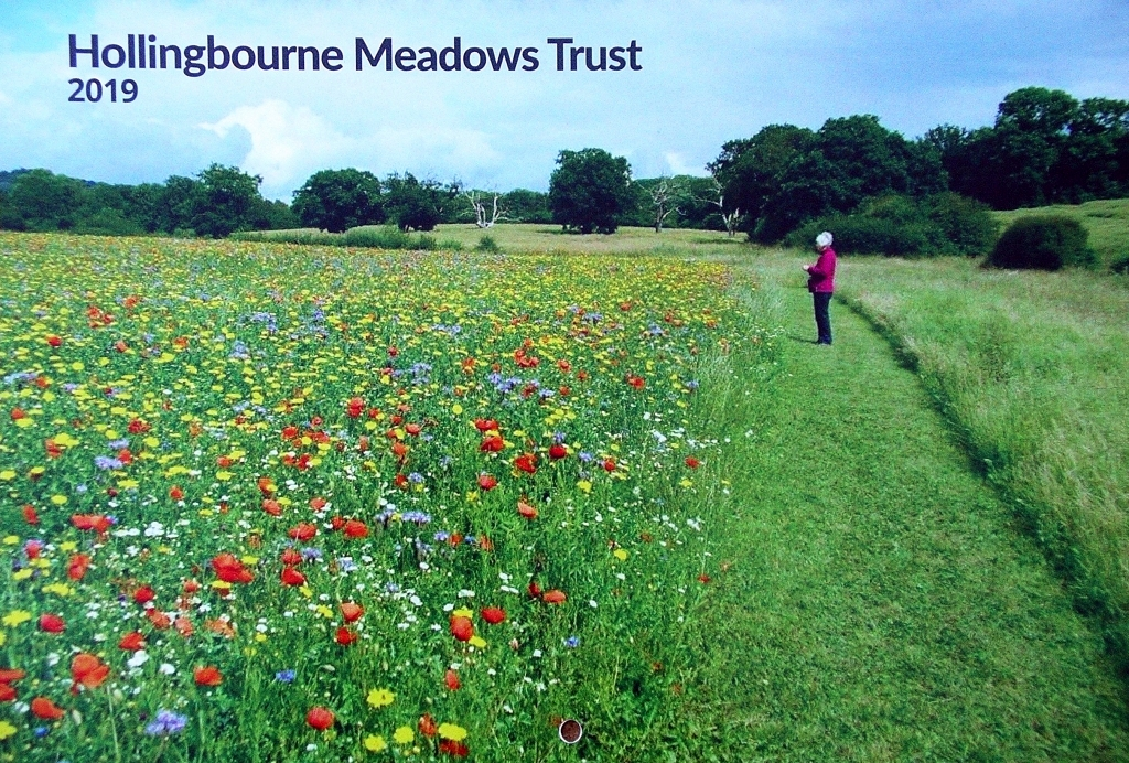 2019 Meadows Trust Calendar