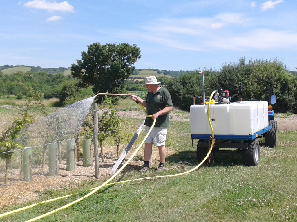 Ben watering the Windmill Meadow hedgerow with the new pumped bowser