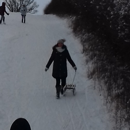 Tobogganing in the meadows