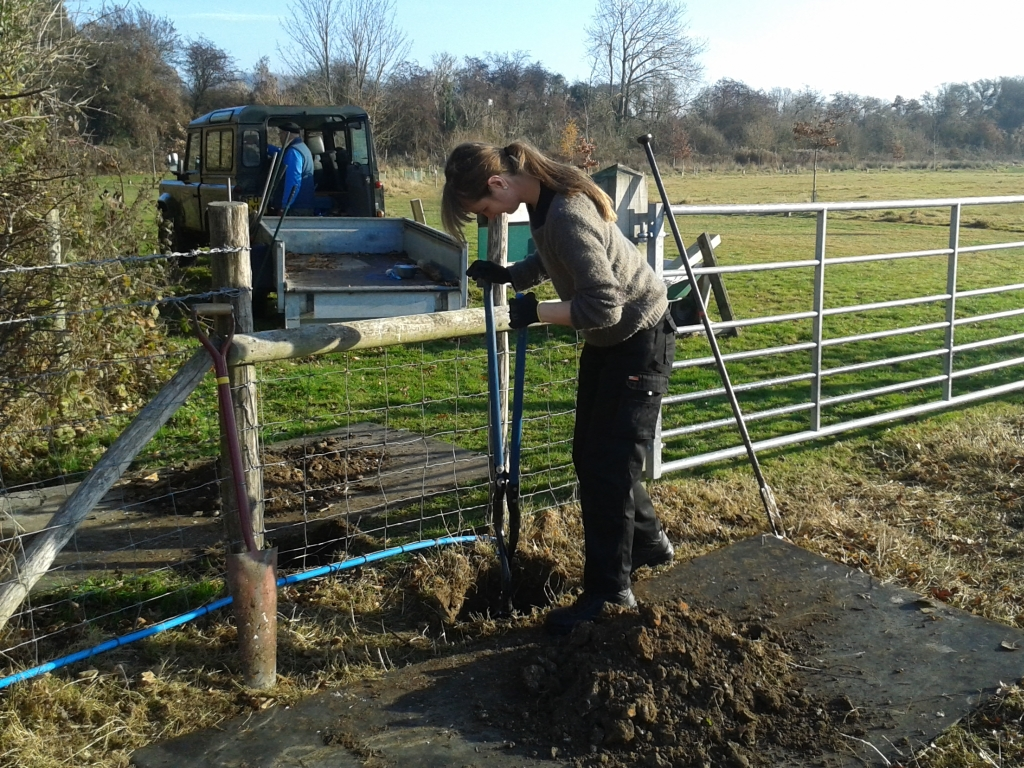 The repair of the Godfrey Meadow stile.