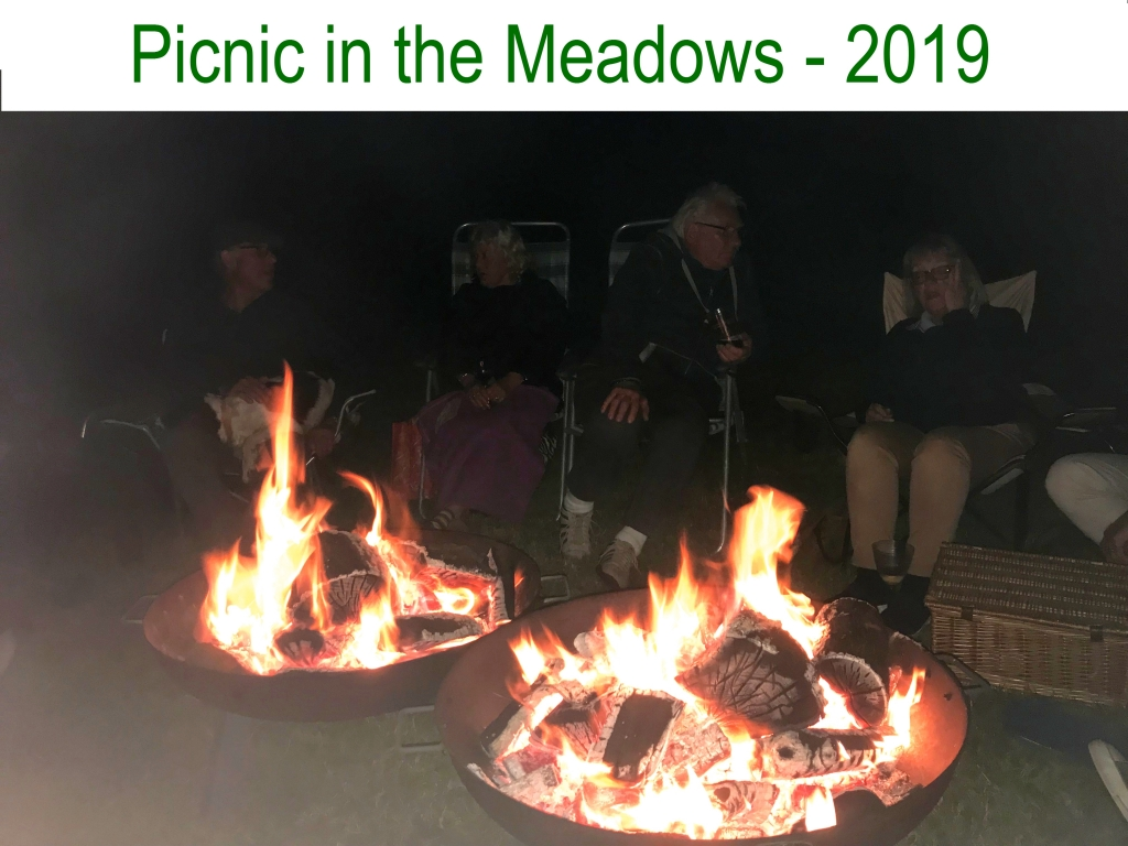 Picnic in the Meadows - 2019