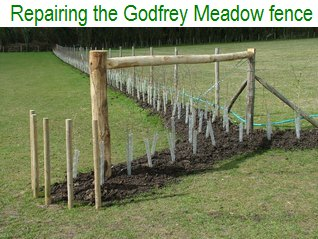 Repairing the Godfey Meadow fence