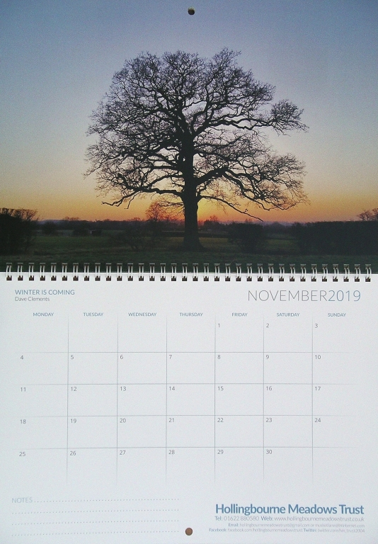 Calendar Month of November